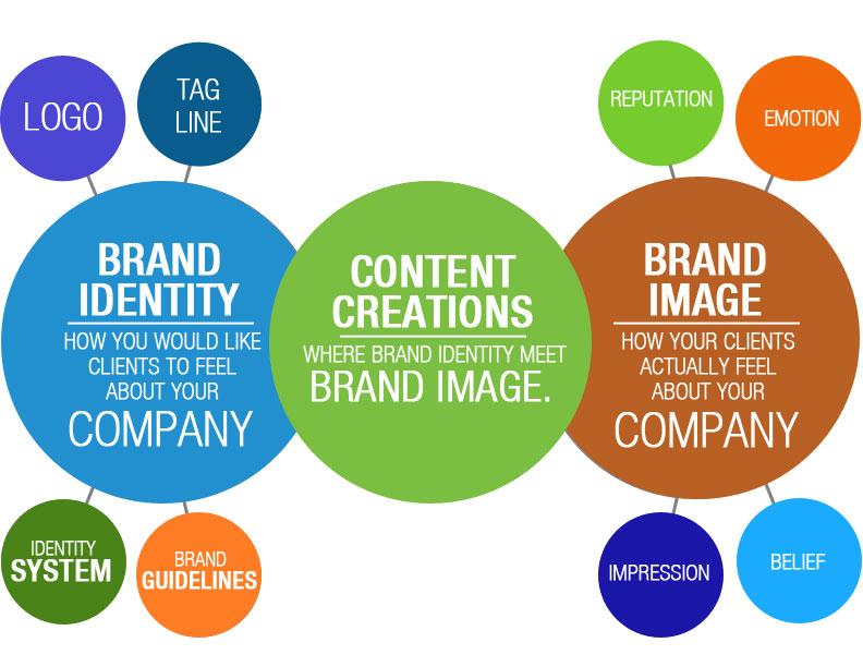 Brand_Identity_2-new